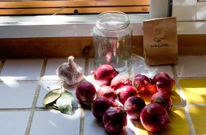 Ingredientes para cebollas | Sra. Kraut